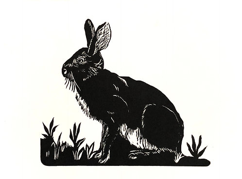 Hare in The Garden, Variable Edition #1 of 20
