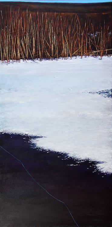 On Thin Ice-  40¨ x 20¨