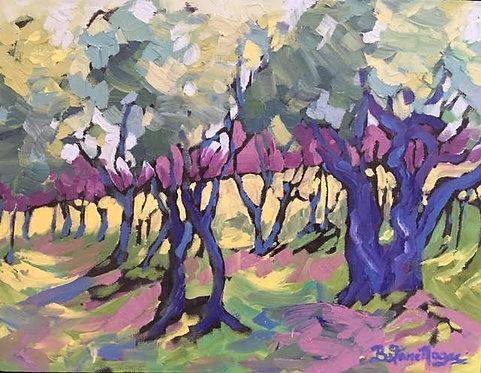 Provence en Plein Air, Col. 5