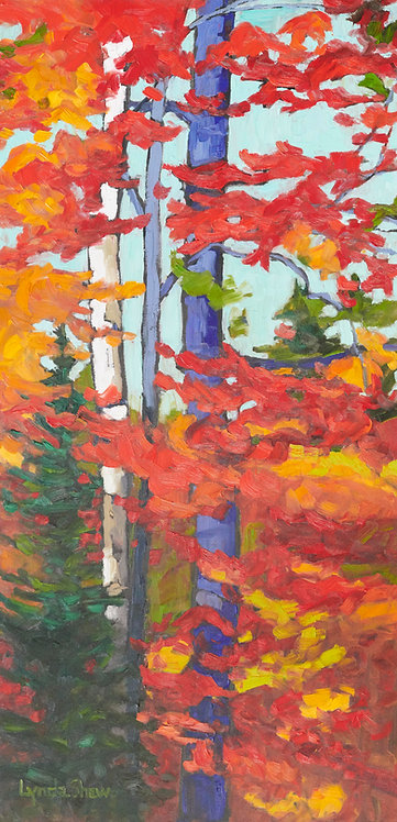Birch Tree and Red Leaves Col.4