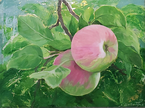 """Ripe for the Picking 2, 6×8"""""""