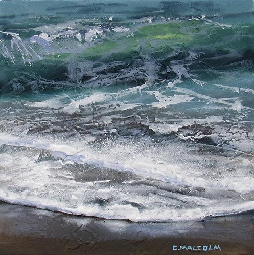 Shoreline Study 53617