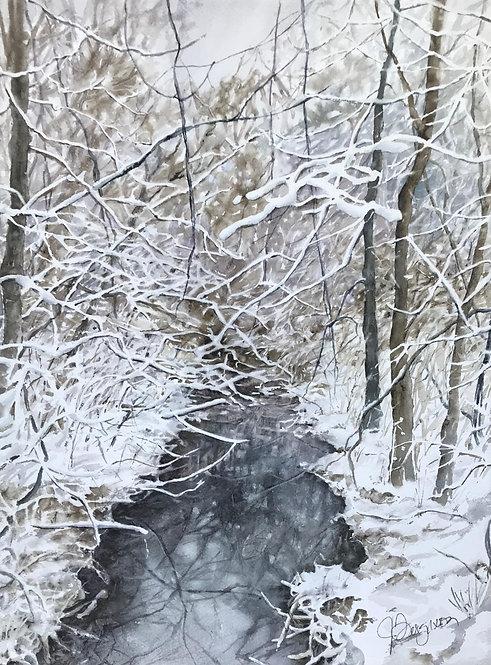 November Snow at Conlon Farm Creek