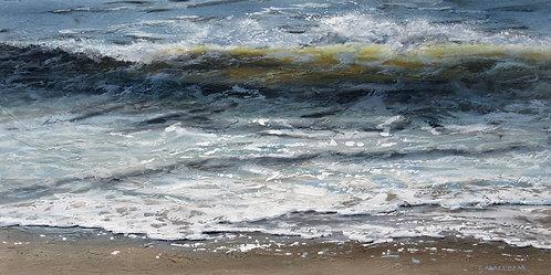 Shoreline Study 09419