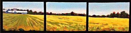 Farm - Christie Lake Road (Triptych)