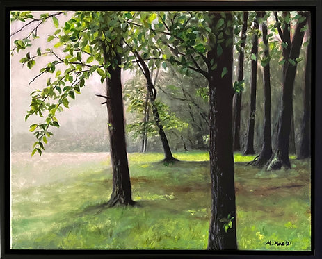"Granville PA woods- 16x20"""