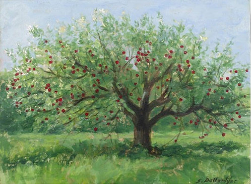 """Apple Tree, 8x6"""""""