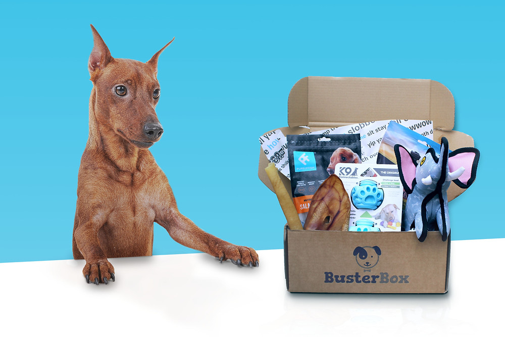 BusterBox Subscription Box