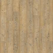 Superior dryback light pine.jpg