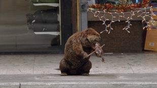 MONSTER Beaver.jpg