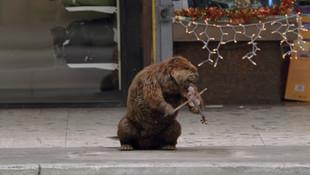 MONSTER - Beaver