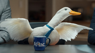 AFLAC - Brace Yourself