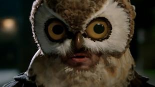 CAPTAIN MORGAN - Night Owl