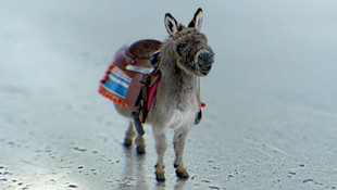 GE - Invention Donkey