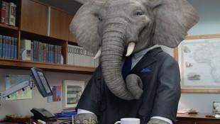ELEPHANT INSURANCE - Founder