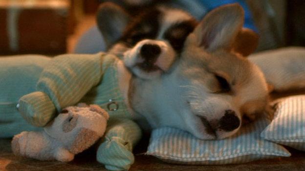 NY_Lotto_SleepyTime.jpg