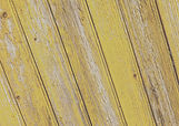 Yellow%2520Plank%2520Background%2520Angl