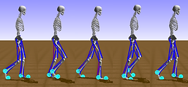 phase2gait.png