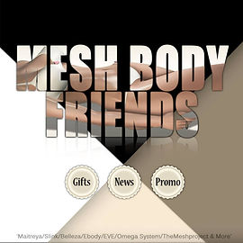 Group Mesh Body Friends.jpg