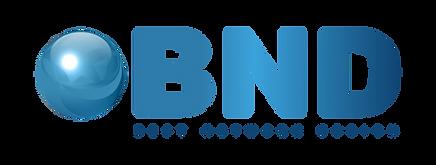 BNDLogo.png