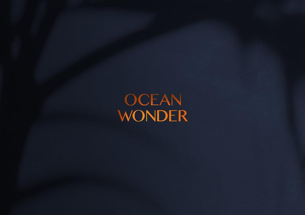 Ocean Wonder, seafood resturant bronze foil