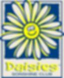 daisies kindergarten.jpg