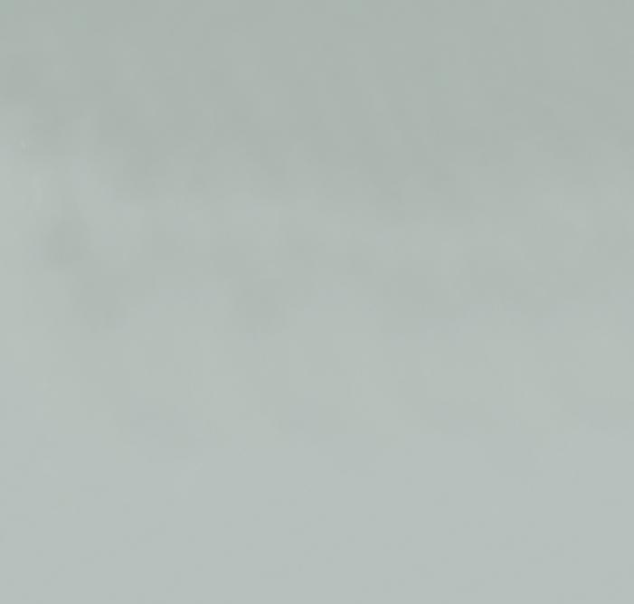 Screen Shot 2021-08-12 at 12.41.26 PM.png