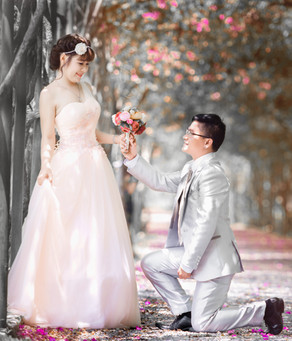Proposal - Pre-wedding