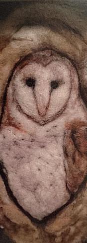 #371 Barn Owl Shadow Box.JPG