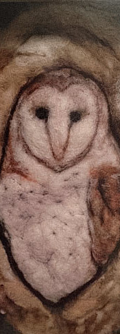 #371 Barn Owl Shadow Box.JPG