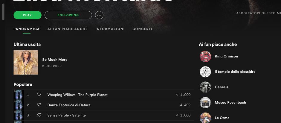 Spotify artist profile