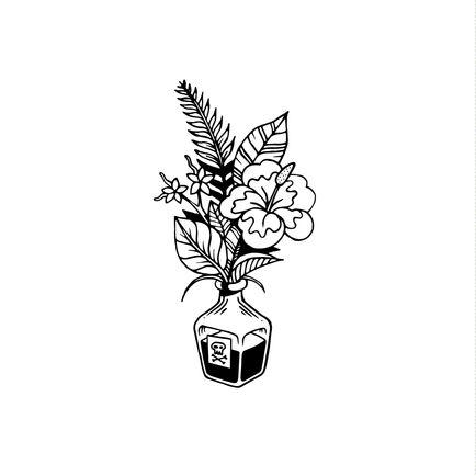Illustration / Plante Noire