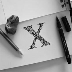 X-36daysoftype