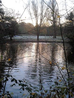Cannon Hill Park Dawn Postcard