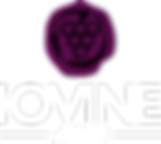 iovine logo.png