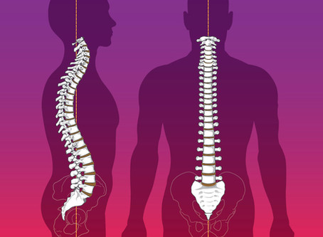How often should I see a Chiropractor?