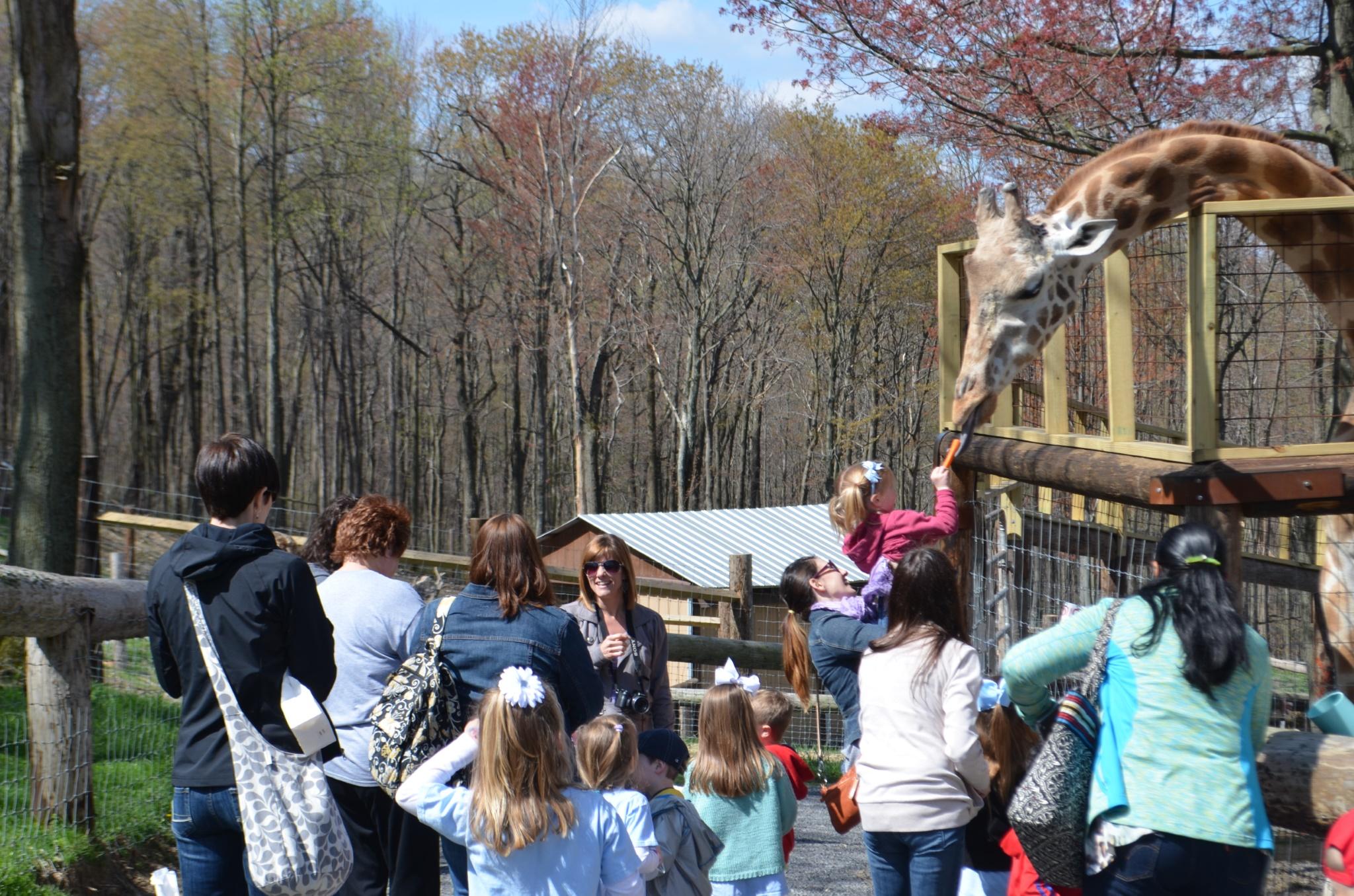 2013-04-26 10.04.08 K4 Hovatter's Zoo Field Trip