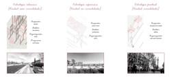 07_Ruralizaccion_Estrategias