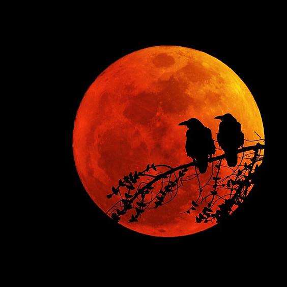 Harvest Moon Full Moon SUP