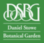 DSBG-Logo-White-on-Green.png