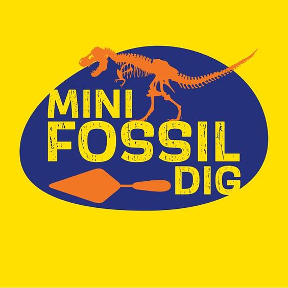 Mini Fossil Dig