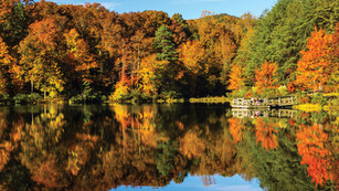 Take in the Splendor of Fall Colors by Hiking these 5 trails in Gaston County