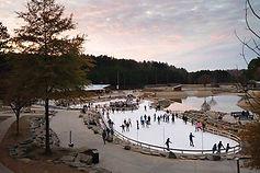 Ice-Skating-at-USNWC.jpg