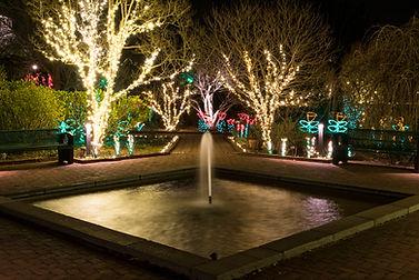 20161228_NC_Belmont_Holidays-At-The-Garden-DSBG-2016_DSC0602Steve-Huff-Media.jpg