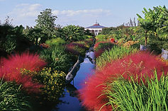 DSBG Canal Garden Fall.jpg