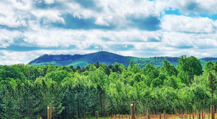A Perfect Way To Taste Your Way Through Gaston And Cleveland Counties