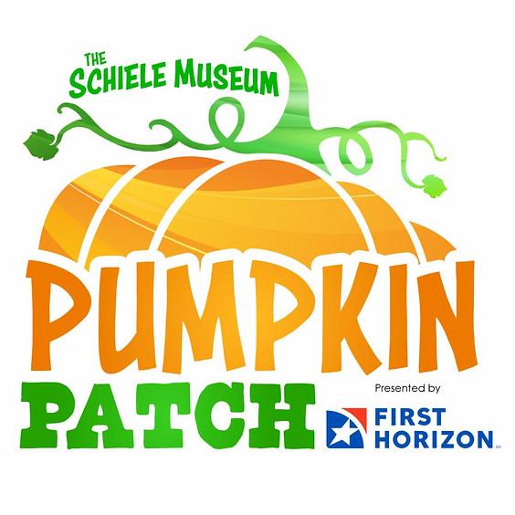 The Pumpkin Patch Returns