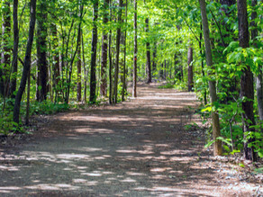 The Best Hikes in Gaston