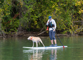 8 Dog-Friendly Adventures in Gaston County