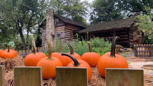 Pick your own pumpkins this fall through Halloween in Gaston County